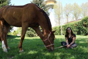 Blickfang am Grasen,Milena
